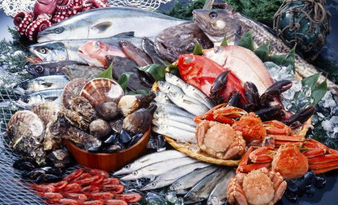 Il Ristorante di pesce a Parma dove il pescato fresco arriva ogni giorno